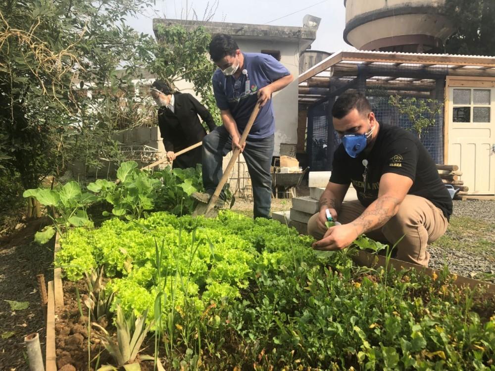 Cultivo de plantas traz ainda mais vida ao Hospital São José de Criciúma