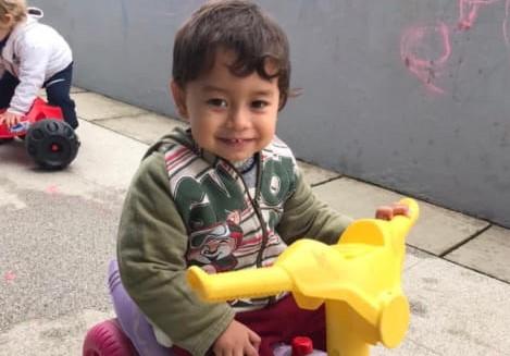 Criança de 2 anos morre após picada de bicho peçonhento no Vale do Itajaí